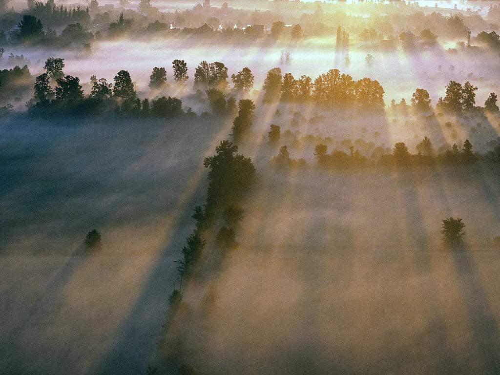 Утро туманное на краю села