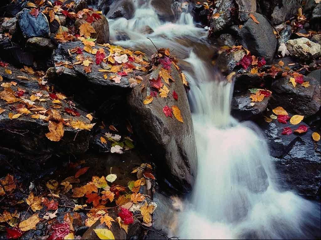 Пора красивый пейзаж с водопадом