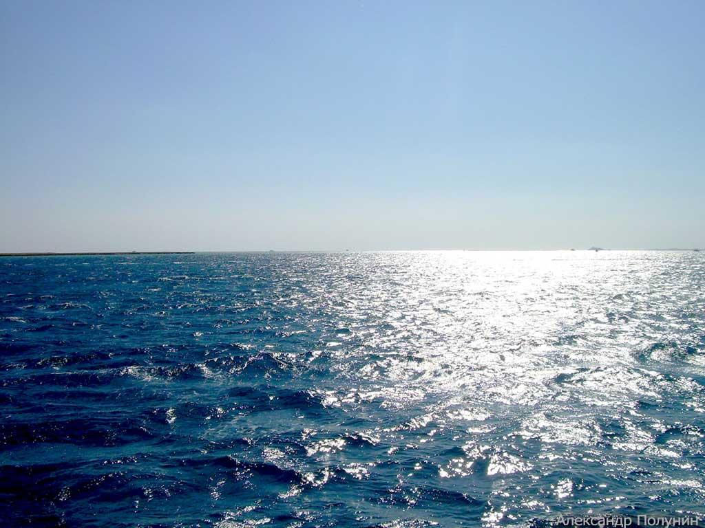 Пляж фото моря